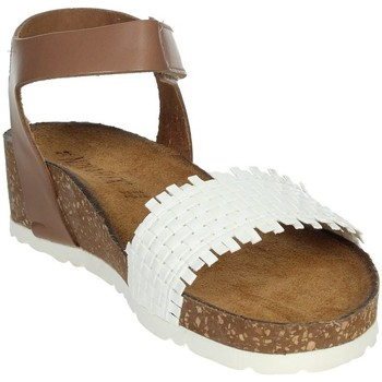 Schoenen Dames Sandalen / Open schoenen Novaflex AGLIENTU White