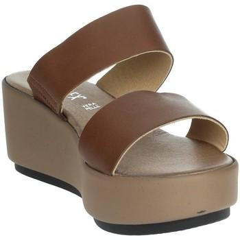 Schoenen Dames Leren slippers Novaflex ACQUARICA Brown