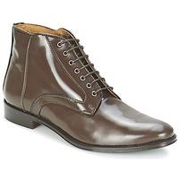 Schoenen Dames Laarzen Fericelli TAMALORA Brown