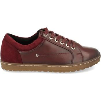 Schoenen Dames Lage sneakers Clowse VR1-373 Burdeos