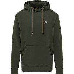 Textiel Heren Sweaters / Sweatshirts Lee Sweatshirt  Serpico vert olive