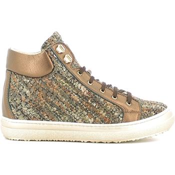 Schoenen Kinderen Hoge sneakers Alberto Guardiani GK22950G Bruin
