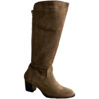 Schoenen Dames Hoge laarzen Buonarotti 1A-0467 Verde