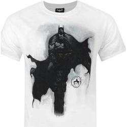 Textiel Heren T-shirts korte mouwen Dessins Animés  Wit