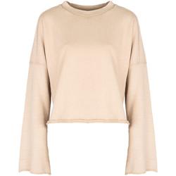 Textiel Dames Sweaters / Sweatshirts Champion  Beige