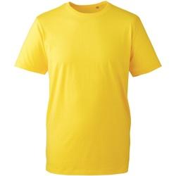 Textiel Heren T-shirts korte mouwen Anthem AM010 Geel