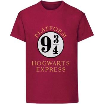 Textiel Kinderen T-shirts korte mouwen Harry Potter  Marron
