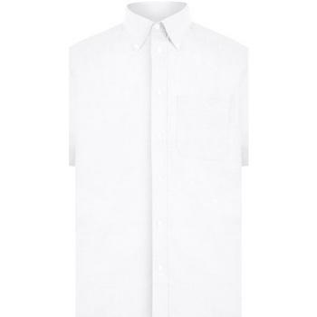 Textiel Heren Overhemden korte mouwen Absolute Apparel  Wit