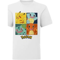 Textiel Kinderen T-shirts & Polo's Pokemon  Wit