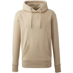Textiel Heren Sweaters / Sweatshirts Anthem AM01 Woestijnzand