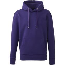 Textiel Heren Sweaters / Sweatshirts Anthem AM01 Paars