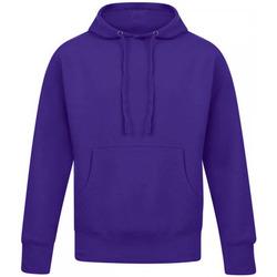 Textiel Heren Sweaters / Sweatshirts Casual Classics  Paars