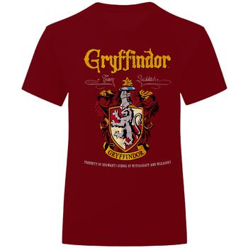 Textiel T-shirts & Polo's Harry Potter  Marron