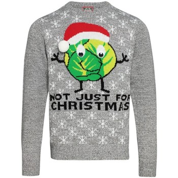 Textiel Sweaters / Sweatshirts Christmas Shop CJ004 Grijs