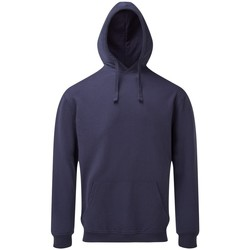 Textiel Heren Sweaters / Sweatshirts Asquith & Fox AQ045 Indigo