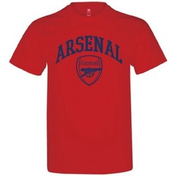 Textiel Kinderen T-shirts & Polo's Arsenal Fc  Rood