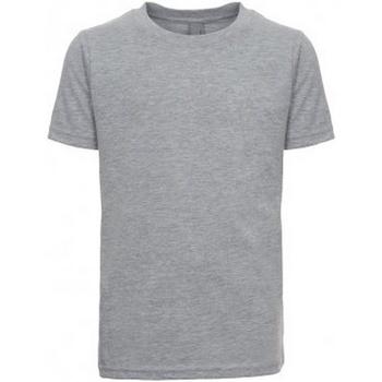 Textiel Kinderen T-shirts & Polo's Next Level NX3310 Grijze Heide