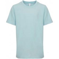 Textiel Kinderen T-shirts korte mouwen Next Level NX3310 Lichtblauw