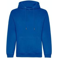 Textiel Heren Sweaters / Sweatshirts Awdis JH201 Koningsblauw