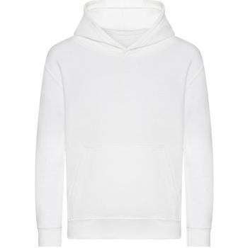 Textiel Kinderen Sweaters / Sweatshirts Awdis J201J Arctisch Wit