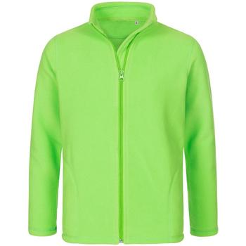 Textiel Heren Fleece Stedman  Kiwi Groen