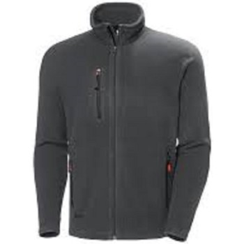 Textiel Sweaters / Sweatshirts Helly Hansen 72026 Donkergrijs