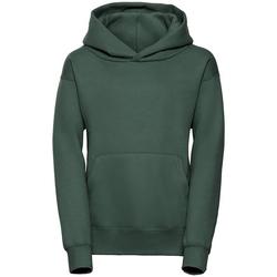 Textiel Heren Sweaters / Sweatshirts Jerzees Schoolgear R265B Fles groen