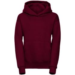 Textiel Heren Sweaters / Sweatshirts Jerzees Schoolgear R265B Bourgondië