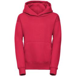 Textiel Dames Sweaters / Sweatshirts Jerzees Schoolgear R265B Rood
