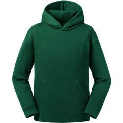 Textiel Heren Sweaters / Sweatshirts Jerzees Schoolgear R266B Fles groen