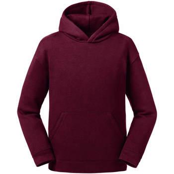 Textiel Heren Sweaters / Sweatshirts Jerzees Schoolgear R266B Bourgondië