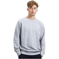 Textiel Sweaters / Sweatshirts Mantis M194 Grijze Heide