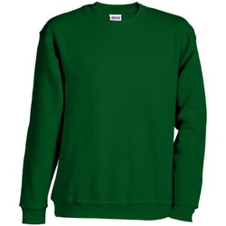 Textiel Sweaters / Sweatshirts James And Nicholson  Donkergroen