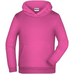 Textiel Kinderen Sweaters / Sweatshirts James And Nicholson  Roze