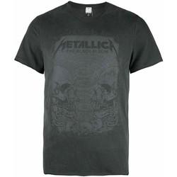 Textiel Heren T-shirts korte mouwen Amplified  Grijs