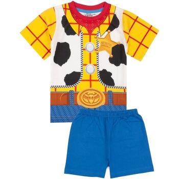 Textiel Jongens Pyjama's / nachthemden Toy Story  Blauw/Geel