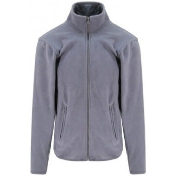 Textiel Sweaters / Sweatshirts Pro Rtx  Massief Grijs