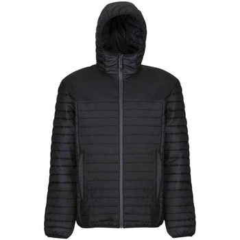 Textiel Heren Jacks / Blazers Regatta RG2053 Zwart