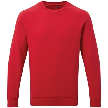 Textiel Heren Sweaters / Sweatshirts Asquith & Fox AQ078 Kersenrood