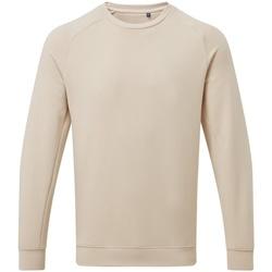 Textiel Heren Sweaters / Sweatshirts Asquith & Fox AQ078 Natuurlijk