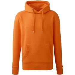 Textiel Heren Sweaters / Sweatshirts Anthem AM001 Oranje