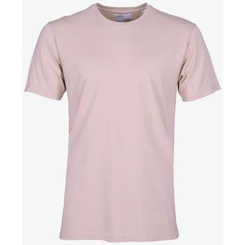 Textiel T-shirts korte mouwen Colorful Standard T-shirt  Faded Pink rose pale