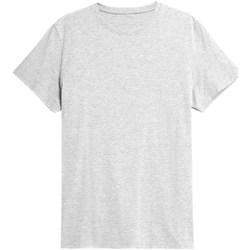 Textiel Heren T-shirts korte mouwen 4F TSM352 Gris