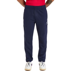 Textiel Heren Trainingsbroeken Diadora Cuff Core Blauw