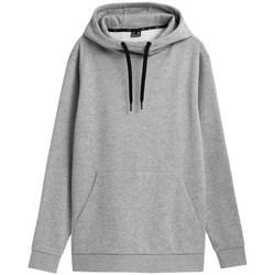 Textiel Heren Sweaters / Sweatshirts 4F BLM352 Gris
