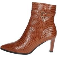 Schoenen Dames Laarzen Braccialini I58 Brown leather