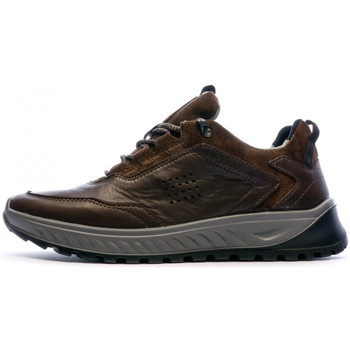 Schoenen Heren Lage sneakers TBS  Brown