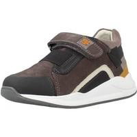 Schoenen Jongens Lage sneakers Garvalin 211501 Bruin