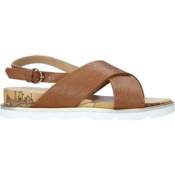 Schoenen Dames Sandalen / Open schoenen Alviero Martini E894 9543 Bruin
