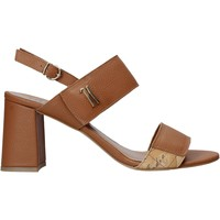 Schoenen Dames Sandalen / Open schoenen Alviero Martini E124 587A Bruin